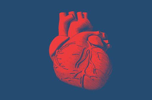 De multiples mécanismes en jeu dans les atteintes cardiaques de la COVID-19 (illustration).