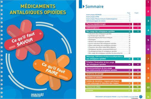 Le guide publié par le RESPADD propose aux professionnels les informations nécessaires pour un bon usage des médicaments antalgiques opioïdes.